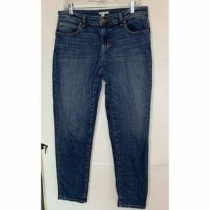 Eileen Fisher Womens Cotton Jeans Size 8 Blue
